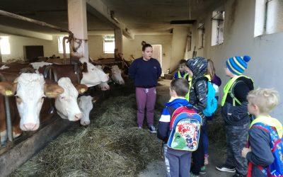 Dan na kmetiji