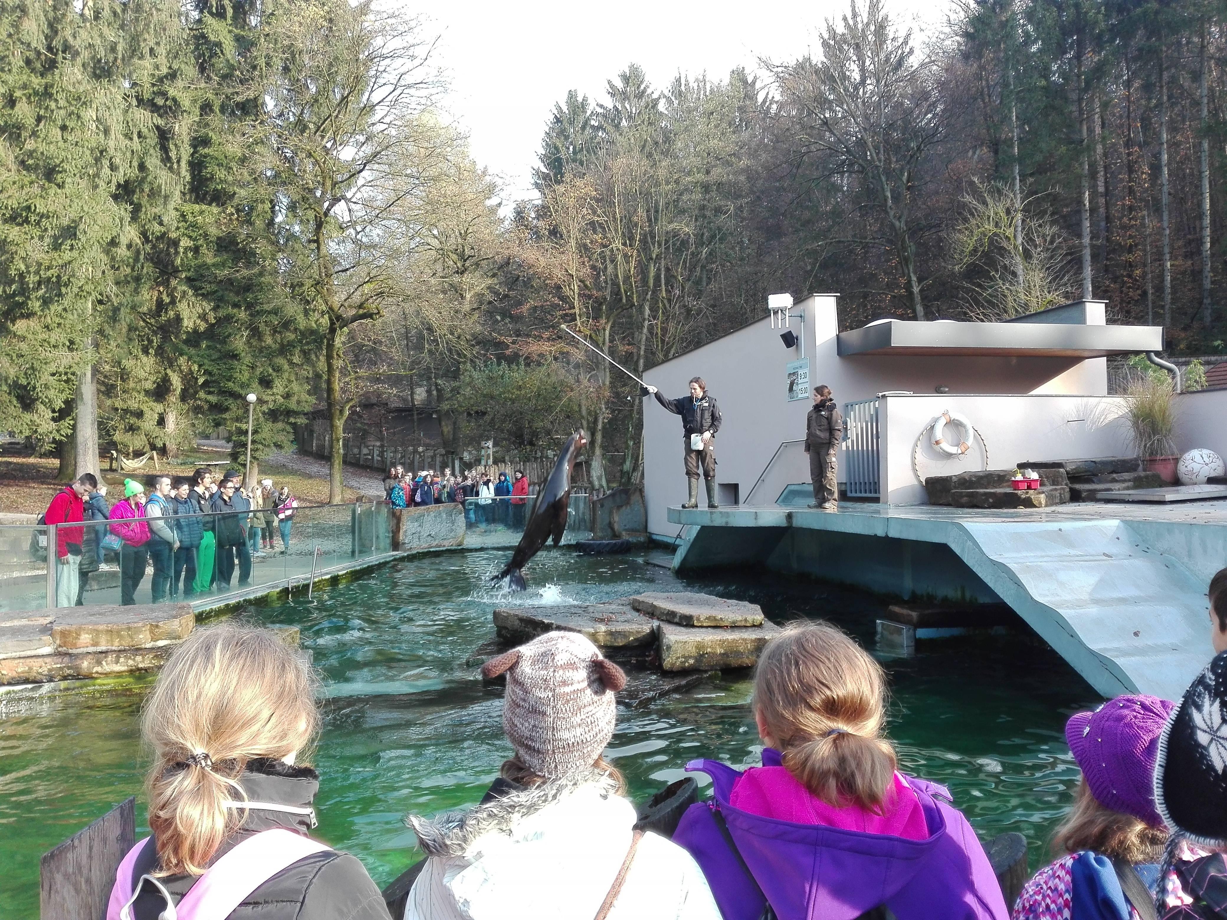 Živalski vrt – jesen 2016
