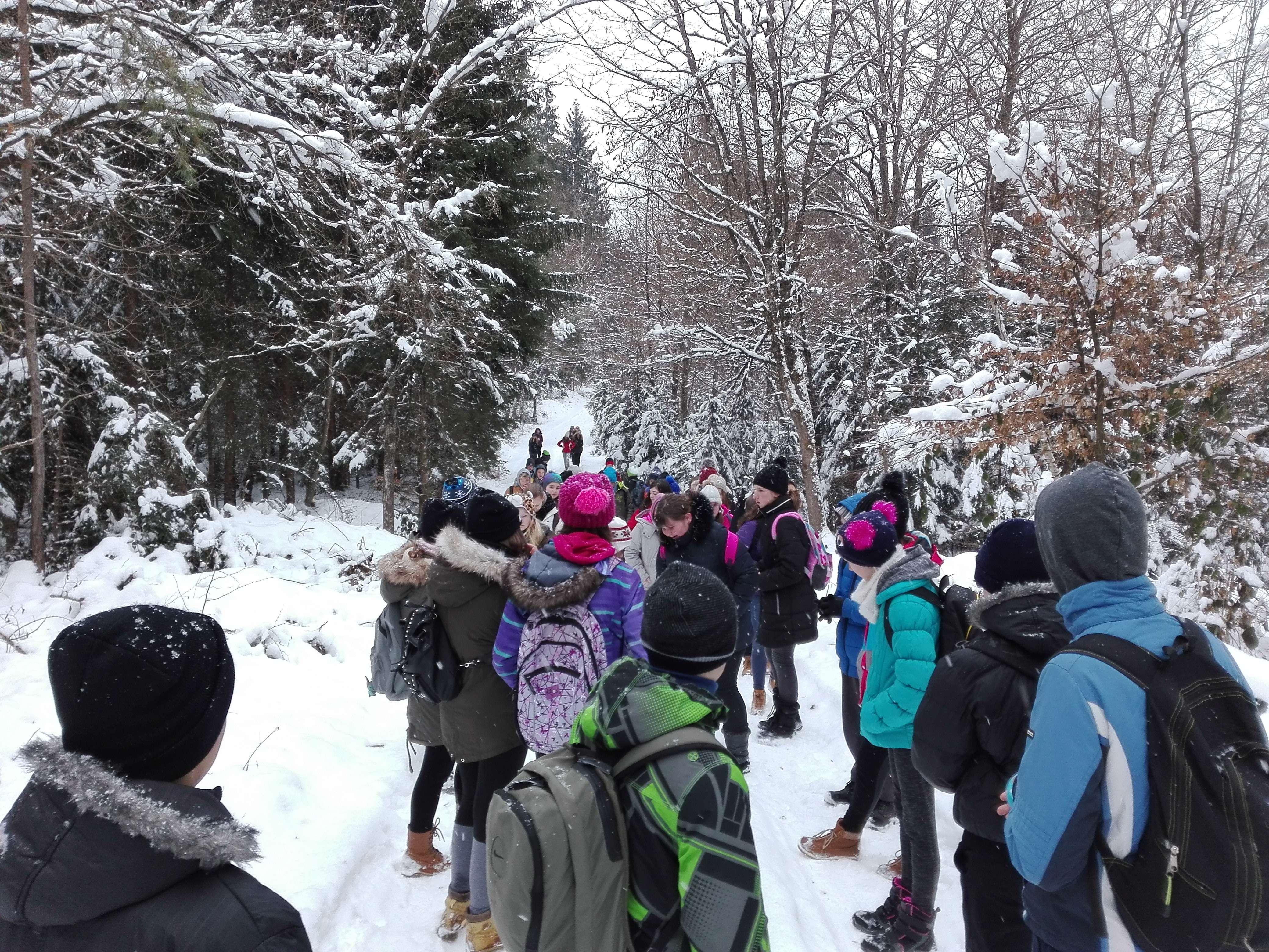 Zimski športni dan – pohod in smučanje