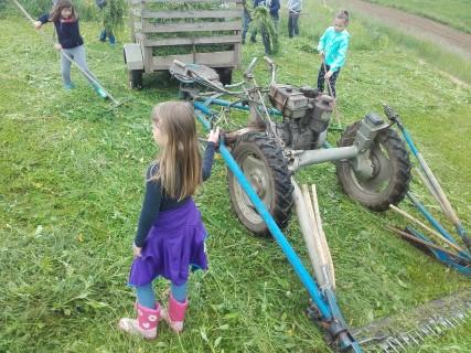 Učno dopoldne na kmetiji